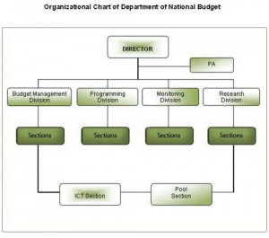 Department of National Budget, Organogram